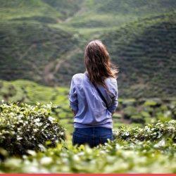 Lisez ces 20 citations sur la solitude pour faciliter la vôtre