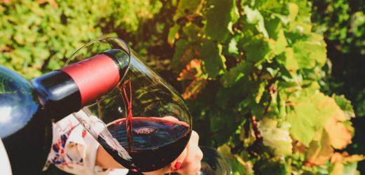 Quel cadeau offrir à un amateur de vin ?