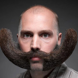 Tailler sa barbe : nos conseils pour bien entretenir votre barbe