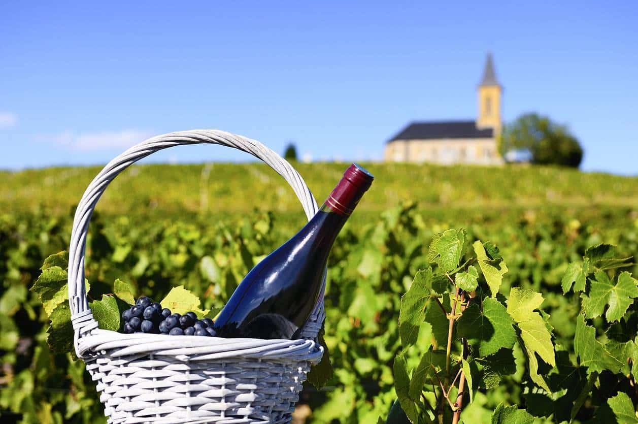 accessoire vin ; panier à vin